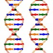 DNA helices — Stock Photo