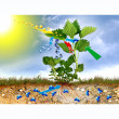 Stockfoto: Photosynthesis