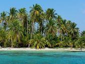Paradise island, panama, San Blas — Stock Photo