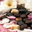 Chocolate truffles and rose petals 02 — Stock Photo