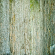 Wood texture, 08 — Stock Photo