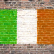 Irish flag — Photo #8841500