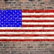 USA flag — Stock Photo #8842244
