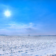 Sun and snow — Stock Photo