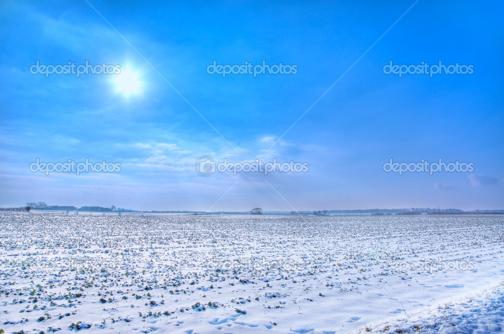Snow covered fields on a sunny day — Foto Stock #9017111