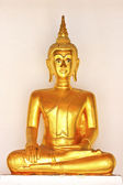 Golden sitting Buddha statue in temple in thailand — Stock Photo