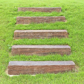Stairs on a meadow. — Stock Photo