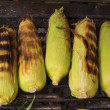 Corn on the Cob grilling on a Grill — Stock Photo