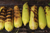 Corn on the Cob grilling on a Grill — Stok fotoğraf