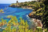 View capraia Island, Tuscany — Stock Photo
