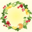 Stock Vector: Citrus wreath