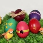 Wschodniej jaj — Zdjęcie stockowe