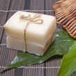 Piece of natural soap — Stock Photo #9093160