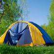 Colourful Camping Tent in the forest — Stock Photo