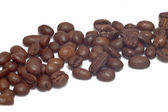 Range of coffee beans — Stock Photo