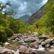 Mountain river, Himalayas — Stock Photo