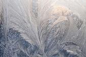Inverno — Foto Stock