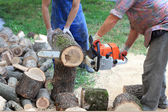 Wood cutting — Stock Photo