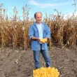 Farner in field — Stock Photo