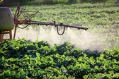 Agriculture — Stock Photo
