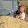 Stock Photo: Photographing harvest