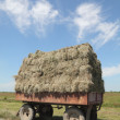 Straw transportation — Stock Photo #8947900