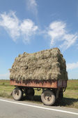 Straw transportation — Photo