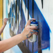 Graffiti — Stock Photo #8962374
