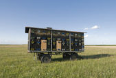 Hives at truck trailer in green field — Stock Photo