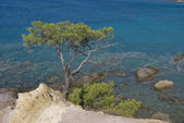 View from coast of Greece island Thassos — Stock Photo