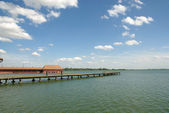 Palic lake — Stock Photo