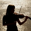 Violin player — Stock Photo #9163952