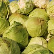 Heap of cabbage — Stock Photo #9230618