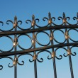 Metal fence — Stockfoto #9230857