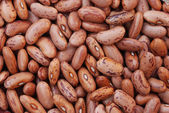 Brown bean — Stock Photo