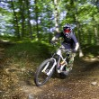 Downhill mountain bikers — Stock Photo #8895762