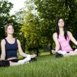 Stock Photo: Young girls doing yoga in the park