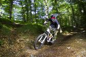 Downhill mountain bikers — Stock Photo
