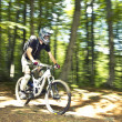 Stock Photo: Downhill biker