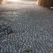 Stock Photo: Cobble stone street