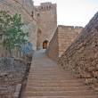 Stairs up to the castle — Stock Photo