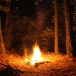 Stock Photo: Bonfire in woods