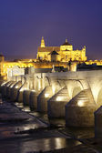 Roman Bridge and Mosque of Cordoba — Stock Photo
