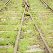 Merging railway lines — Stock Photo