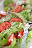 Close Up of salad — Stock Photo