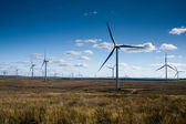 Windfarm — Stock Photo