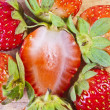 A group of whole, organic strawberries around a sliced strawberr — Foto Stock