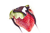 Chocolate Drizzled Strawberry — Stock Photo