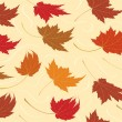 Royalty-Free Stock Vector Image: Seamless Repeating Fall Leaf Background