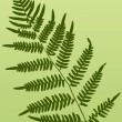 Fern Frond — Vector de stock #8995940